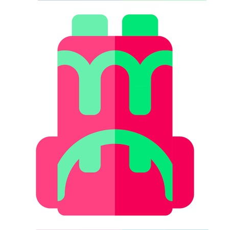 BACKPACK icon flat style pink green