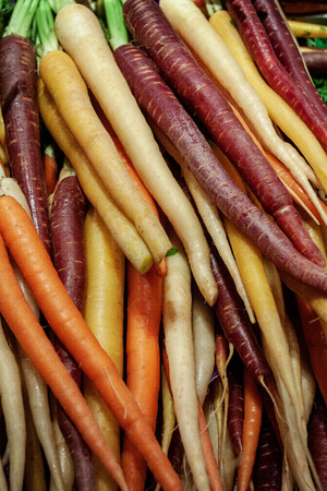 These organic heirloom carrots are seen here in all different colors: purple, orange, yellow, and white. Stock fotó