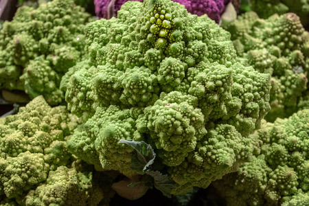 Close up of a Romanesco Cauliflower, also called romanesco broccoli, which a crazy wild looking food often used in gourmet dishes.  Isolated. Selective focus. Room or copy. Banco de Imagens