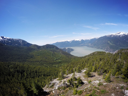 This forest is located near Vancouver, BC.  There is snow capped mountains and a river in the background.  The peace that the place brings gives one an appreciation of nature! 写真素材