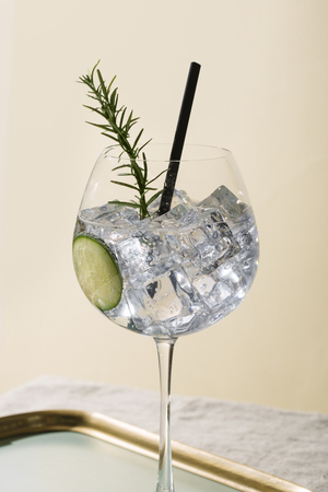 Gin tonic, an aperitif garnished with cucumber and rosemary Reklamní fotografie