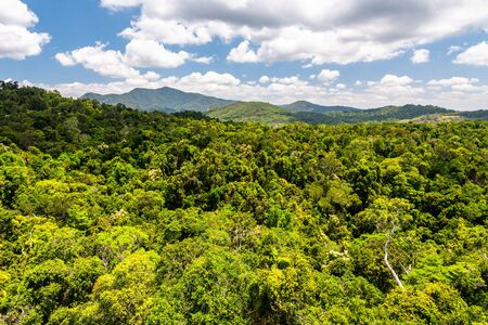 Top view of green and majestic Australian rainforest from a cableway in Kuranda with some clouds and blue sky Banco de Imagens