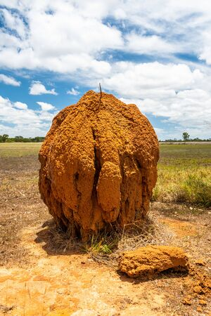 Isolated large termite mould in Queensland outback, Australia Stock Photo