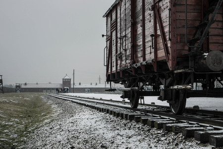 Train Wagon - Auschwitz II, Birkenau