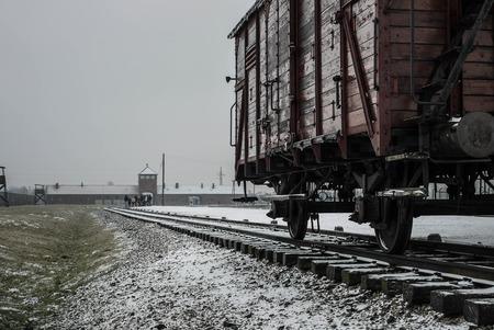 birkenau: Train Wagon - Auschwitz II, Birkenau