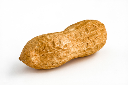 Single Peanut - isolated
