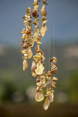 Close-up photography of a hanging shells mobile. Captured at the Andean mountains of central Colombia.
