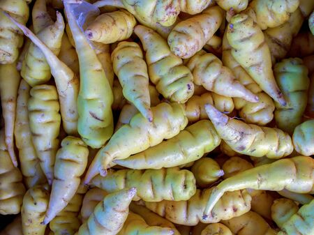 Close-up photography of a bunch of mashua tubers, captured at the traditional local market of the colonial town of Villa de Leyva, in the Central Boyacá Province, part of the Colombian Department of Boyacá.