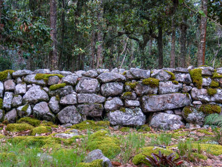 Different sections of a very old stone wall covered in moss, at the hilsidel of the Iguaque mountain in the central Andes of Colombia.