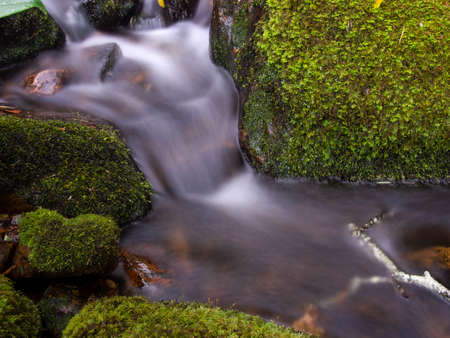 Composite of multiple long-exposure images of the stream of a brook with rocks and logs covered in moss, captured at the hillside of the Iguaque mountain in the central Andes of Colombia.