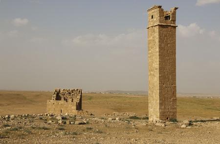 Pillars on which the monks-devotees prayed, next to Umm ar Rasa, Jordan