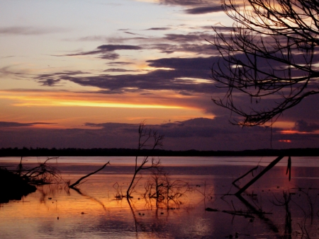 Sunset in the Amazon Stock Photo - 15595215