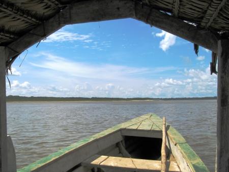 Bladeren op de Amazone