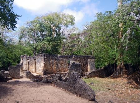 gedi: Gedi ruins close to Malindi Stock Photo