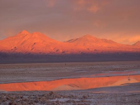 Salar de Atacama buurt van San Pedro de Atacama, Chili