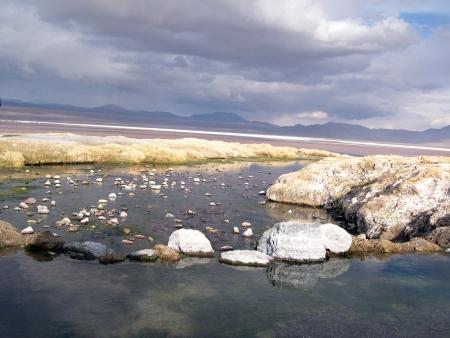 altiplano: Altiplano Landscape - Atacama, Chile