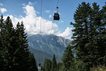 Gondola in forest
