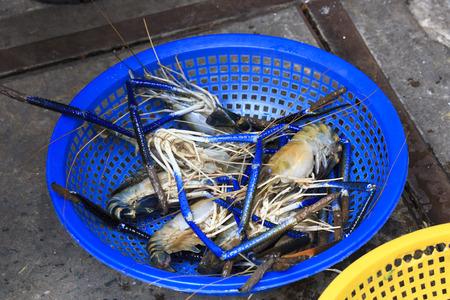 phuket food: Fresh prawns for sale in Saigon