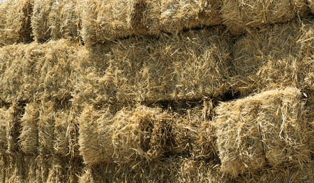 bails: Stacked Straw Hay Bails