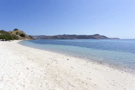 flores: Sunny day on Pink Beach in Komodo National Park