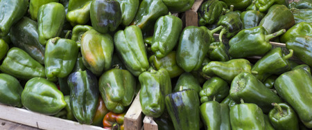 peppery: green pepper background at market, Italy