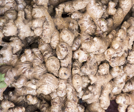 Background, close up of fresh ginger roots