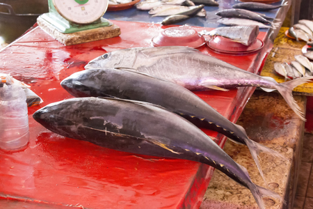 Tuna fishes at market in Indonesia