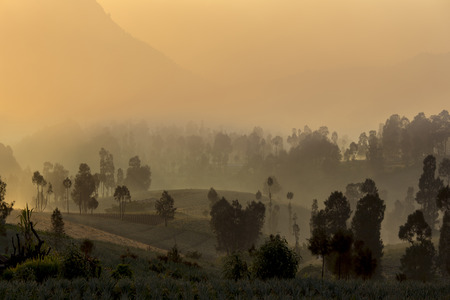 sunrise with fog at Cemoro Lawang, Bromo mountain, Indonesia