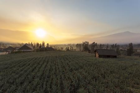cemoro lawang sunrise in Indonesia near Mount Bromo