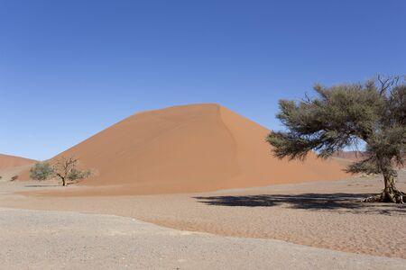Beautiful red dune in the desert of Namibia Stockfoto