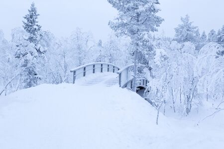 A winter landscape full of snow in Europe