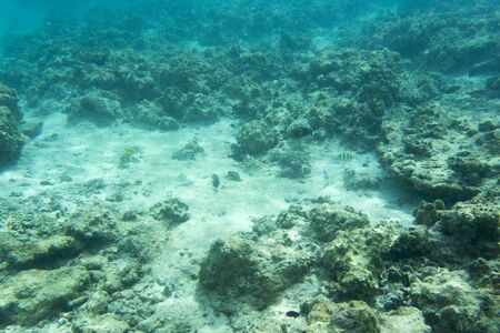 View of beautiful lagoon of New Caledonia Stockfoto