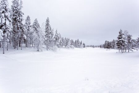 Een bevroren landschap in Lapland in de winter Stockfoto