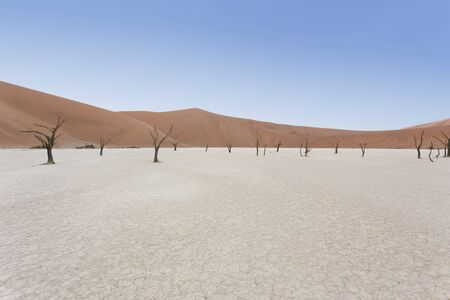 Deadvlei view at morning in Namibia