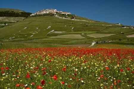 umbria: Landscape of Castelluccio of Norcia, Umbria, Italy Stock Photo