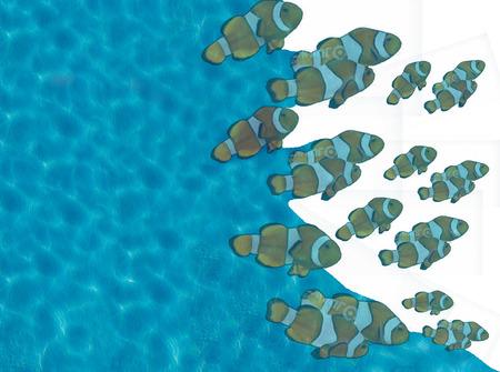 shoal: blue water and shoal of fish clown
