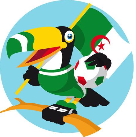 algeria: Algeria toucan
