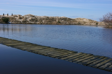 A path across the flooded dunes photo