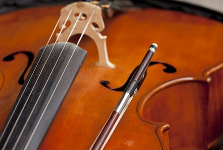 fiddlestick: Viol�n con arco de viol�n.