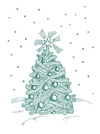 Christmas fir tree on white background