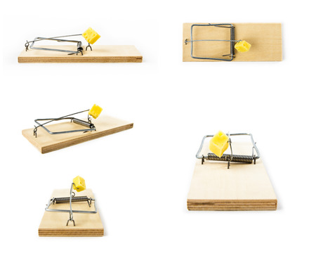 annihilate: Mousetraps with cheese isolated on white background. Collage with Mousetrap.