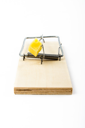 enmesh: Mousetrap with cheese isolated on white background Stock Photo