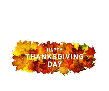 Greeting card with text Happy Thanksgiving day. Thanksgiving day banner. Fallen maple leaves in a row isolated on white.