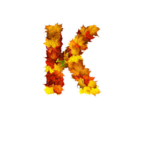 Colorful autumn leaves isolated on white background as letter K. Letter K.