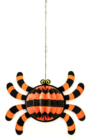 Halloween Spider photo