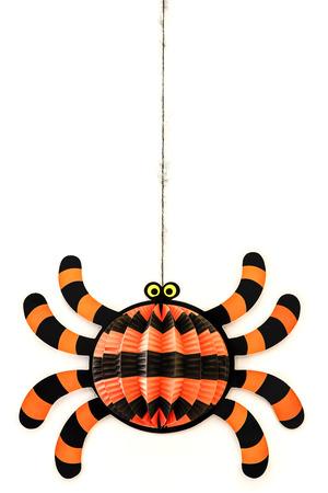 Halloween Spider Stock Photo - 24031007