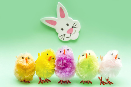 Easter Chicks and Rabbit photo