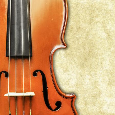 Vintage Violine Standard-Bild - 29307910