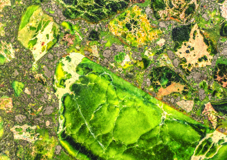 Grüne Meeressediment Agate Pattern Standard-Bild - 33680623