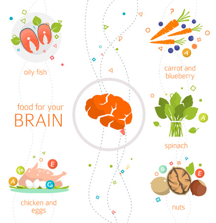 Concept of food and vitamins, which are healthy for your brain / vector illustration / flat style